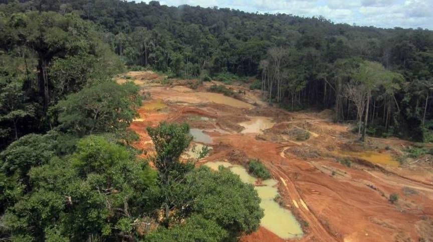 Área desmatada por garimpeiros ilegalmente da Terra Indígena Roosevelt, em Rondônia