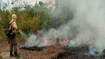 De 1.º de janeiro até 23 de agosto, monitoramento do Instituto Nacional de Pesquisas Espaciais (Inpe) registrou mais focos de incêndio do que o total registrado nos oito primeiros meses completos de 2020