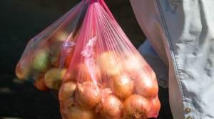 Surto de salmonela nos EUA pode estar ligado a cebolas importadas, diz CDC