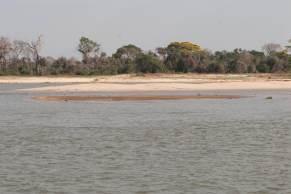 Em 30 anos, Mato Grosso do Sul perdeu 57% de todo o recurso hídrico; no período, 75% da água do Pantanal sumiu