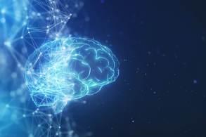 Médico ensina maneiras de treinar o órgão para ajudar a protegê-lo da degeneração no futuro