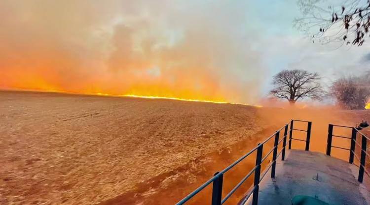 Foco de incêndio na zona rural de Morro Agudo (SP), que decretou calamidade pública