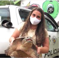 O animal foi encaminhado pela Polícia Militar Ambiental ao zoológico da Cidade da Criança, na última quinta-feira (26)