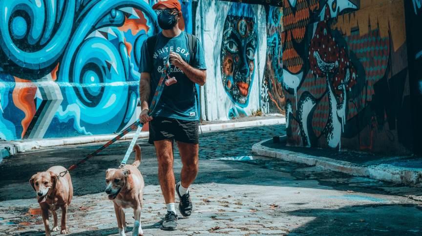 Homem caminha com cães na Vila Madalena