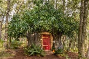 Casa na árvore do Ursinho Pooh poderá ser alugada na Inglaterra; veja fotos