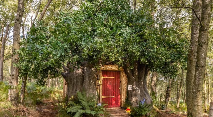 """Airbnb aposta na """"realização dos sonhos de infância"""" ao construir réplica de casa na árvore do Ursinho Pooh"""