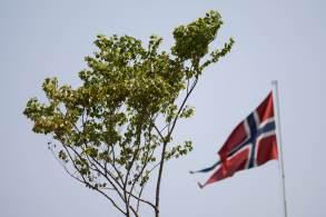 Sonia Guajajara, líder da Apib, justificou a ação dizendo que o país nórdico foi o único que proibiu totalmente o desmatamento em seu território