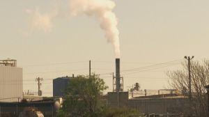 Brasil tem potencial de suprir 22% da demanda global de créditos de carbono