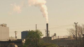A regulação do mercado de carbono será um dos temas da COP26, que acontece em novembro
