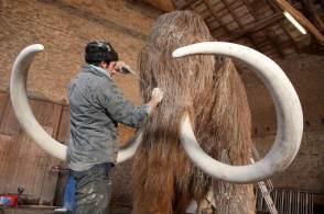 Os defensores dizem que trazer de volta o mamute em uma forma alterada pode ajudar a restaurar o frágil ecossistema da tundra ártica