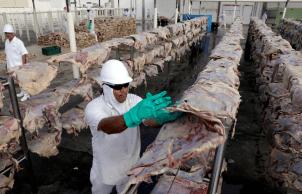 Importação da proteína dos estados de Mato Grosso e Minas Gerais só pode ocorrer se for de gado abatido com 30 meses ou menos