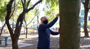 Moradores de São Paulo transformam áreas urbanas em florestas