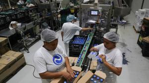 Utilização da capacidade instalada sobe para 72% em agosto, revela CNI