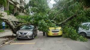 Ventos derrubam árvores, fecham ponte Rio-Niterói e param trens no RJ