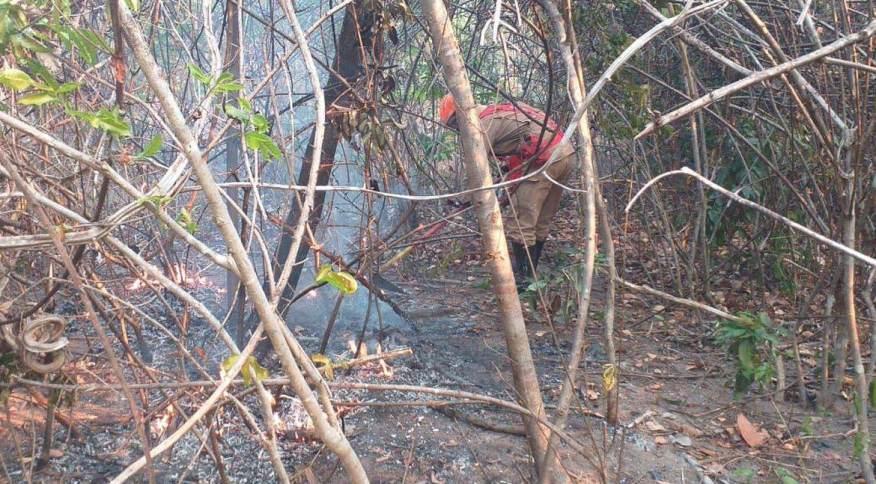Bombeiro trabalha em incêndio que atingiu região da Chapada dos Veadeiros