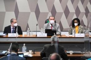 Senadores governistas e grupo de senadores de oposição independentes vão propor alterações