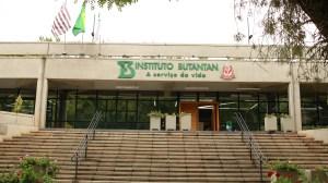 Instituto Butantan encontra objetos históricos durante obras em parque