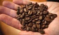 Alta no preço do café é principal responsável por refeição mais cara