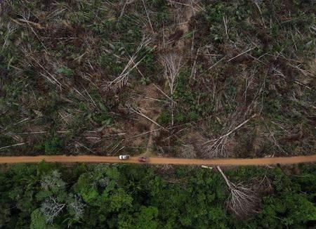 Vista aérea da floresta amazônica brasileira