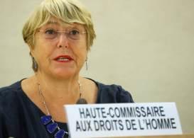 No mesmo discurso, chefe de direitos humanos da organização expressou preocupação com ataques aos povos indígenas no Brasil por garimpeiros ilegais