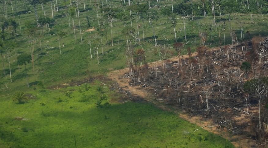 Vista aérea de área desmatada da Amazônia em Rondônia
